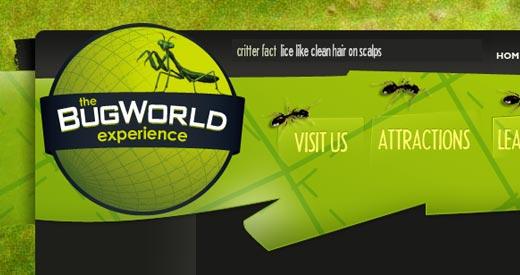 6-bugworldexperience