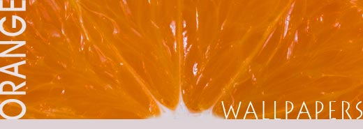 Collection of beautiful wallpapers in orange color